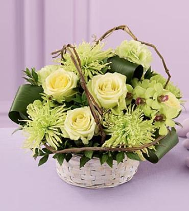 Basket of Dreams? Arrangement