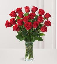 18 Premium Roses (Other Colors Avail.)