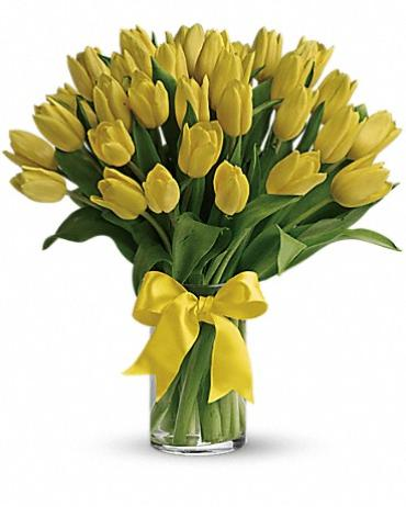 Sunny Tulips (Assorted  Colors)