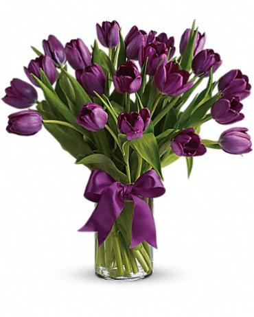 Passionate Purple Tulips ( 12 Stems)